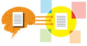 The brain is a contextual processor